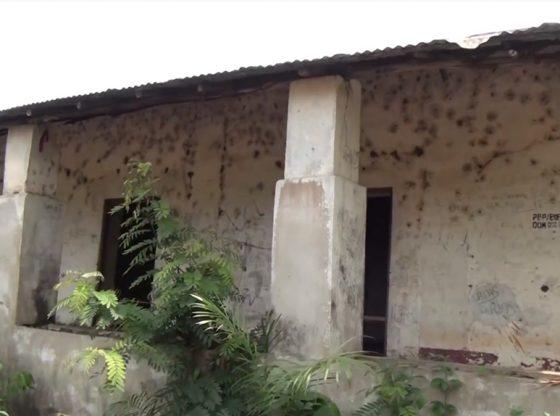 Cinéma : Le cinéaste réalisateur, Paul Théa présente un document sur la traite négrière dans le Rio Pongo